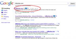 +1 Google Button inblurbs